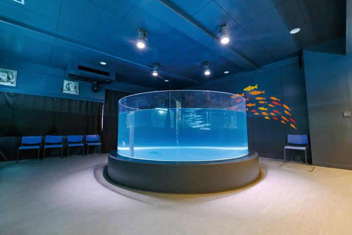 水族館 室戸 廃校 【高知】むろと廃校水族館へ行ってきた
