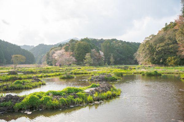 2107トンボ自然公園-01